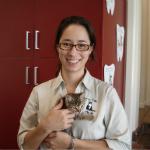 Alison Jukes The Cat Clinic Vet
