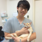Andrew Lau The Cat Clinic Vet