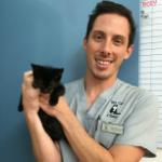 Luciano Lazo The Cat Clinic Vet