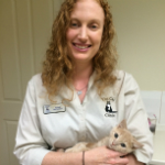 Susan Gottlieb The Cat Clinic Vet
